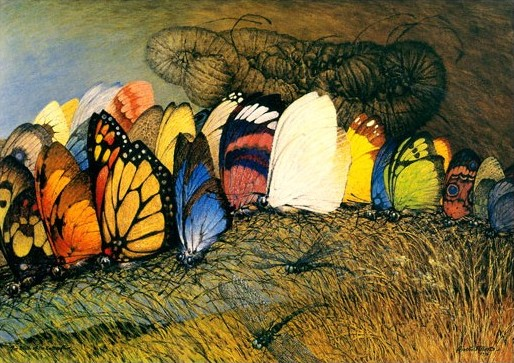 Butterfly painting by Ainslie Roberts