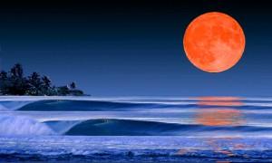 moonlight-waves